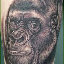 Shane O Neill Tattoo Artist Big Tattoo Planet