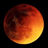red moon northampton -#main