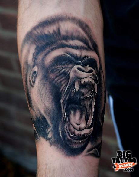 Showing Gallery For Roaring Gorilla Tattoo: piximggif.com/roaring-gorilla-tattoo
